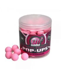 Mainline Special Edition Pop-Ups Scopex & Blackcurrant
